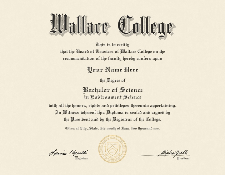 what does a college diploma look like