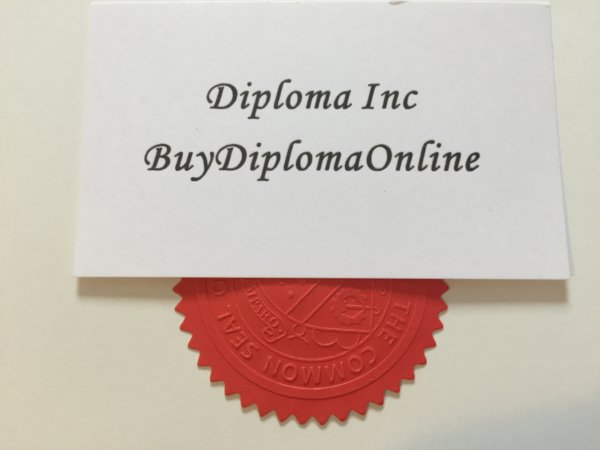 diploma and certificate s seal